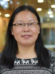 Li Li Nanomaterials Centre