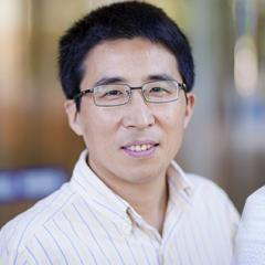 Professor Lianzhou Wang